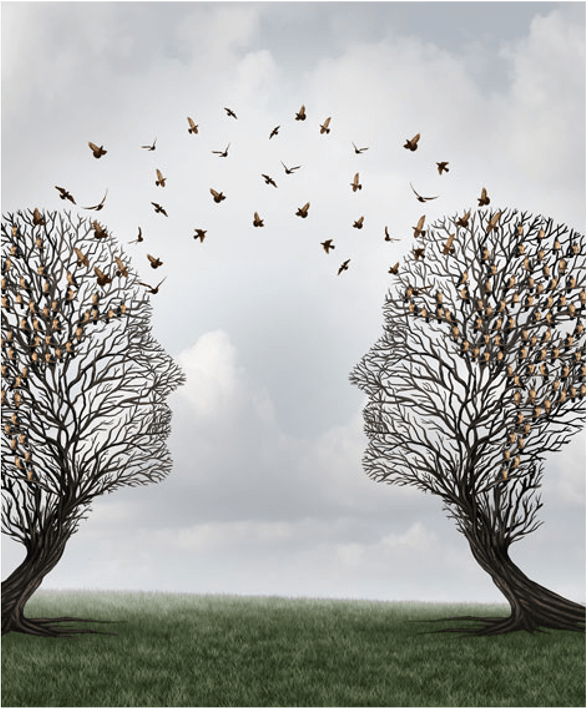 Interpersonal Skills in Organizations are Vital: A Conversation Between Share Collaborative and Growing Minds